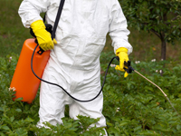 individual in white protective uniform spraying pests